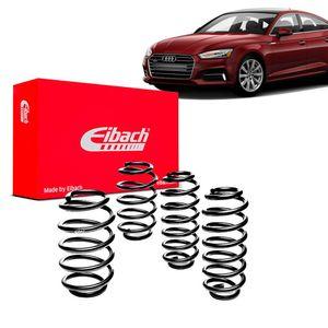Kit-Molas-Eibach--Audi-A5