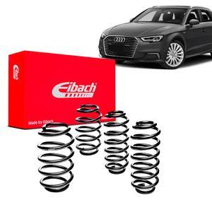 Kit-Molas-Eibach--Audi-A3-Sport