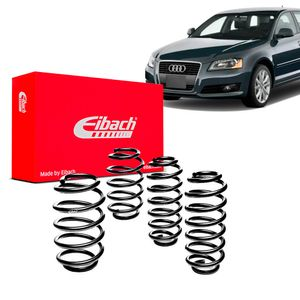 Kit-Molas-Eibach-A3-Sport