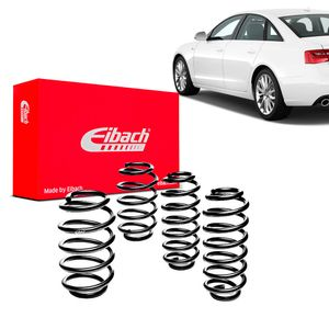 Kit-Molas-Eibach-2013-Audi-A6