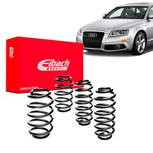 Kit-Molas-Eibach-audi-a6
