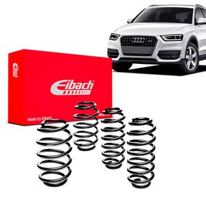 Kit-Molas-Eibach-audi-q3