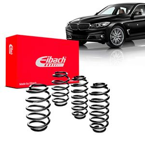 Kit-Molas-Eibach-BMW-328i-GT