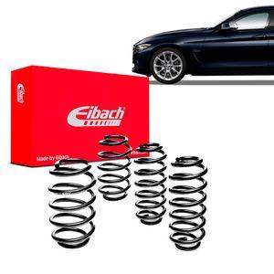 Kit-Molas-Eibach-BMW-420i-Gran-Coupe