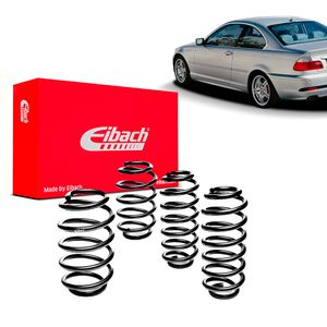 Kit-Molas-Eibach-330-coupe