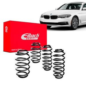 Kit-Molas-Eibach-530i