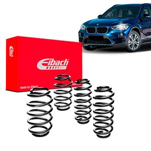 Kit-Molas-Eibach-x1-25i