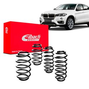Kit-Molas-Eibach-x6-35i