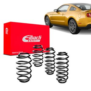 Kit-Molas-Eibach--2010-ford-mustang-gt-premium-coupe-angular-rear