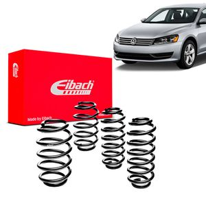 Kit-Molas-Eibach----passat-sedan