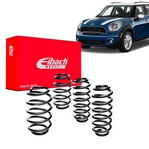Kit-Molas-Eibach-mini-countryman